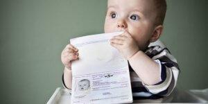 С чего начать и как получить СНИЛС на ребенка через госуслуги