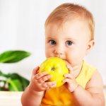 Выплаты на питание ребенка до трех лет, их виды и размер